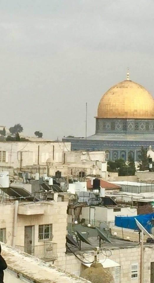 المالكي يطالب بإرسال وفود وزارية عربية للبرازيل والمجر لحثهما على الالتزام بقرارات الشرعية الدولية بشأن القدس