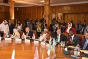 أبو هولي: اجتماع طارئ الثلاثاء المقبل في القاهرة لبحث تجديد تفويض عمل